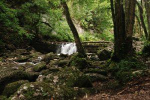 Les Cascades du Hérisson<br> Parc régional du haut Jura