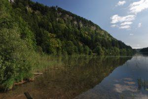 Parc régional du haut Jura : le Lac du Petit Maclu