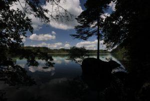 Parc régional du haut Jura