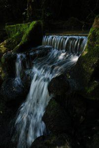 Les Gorges de Flumen<br> Parc régional du haut Jura