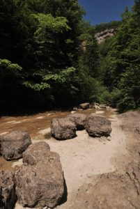 La Cascade de la Queue de Cheval<br> Parc régional du haut Jura