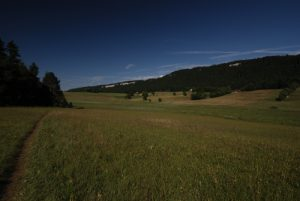 Tourbière du lac des Mortes<br> Parc régional du haut Jura