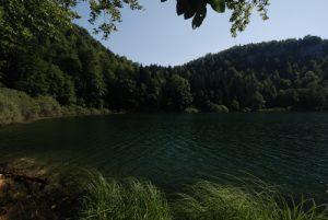 Lac de Bonlieu<br> Parc régional du haut Jura