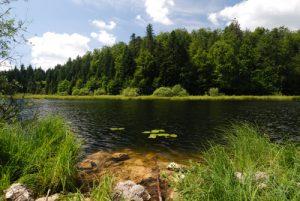 Le Lac de la Fauge près d'Etival<br> Parc régional du haut Jura
