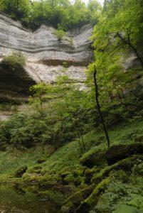 Cascade de Pissevieille<br> Parc régional du haut Jura
