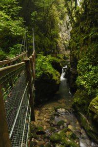 Les Gorges de l'Abîme<br> Parc régional du haut Jura