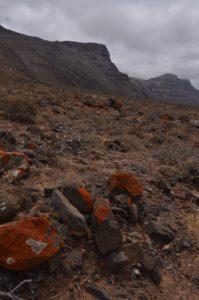 La falaise Risco de Famara<br> Salinas del Rio.<br> Île de Lanzarote (Islas Canarias)