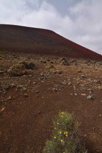 Le volcan Caldera colorada. Parque Nacional de los Volcanes. Île de Lanzarote (Islas Canarias).