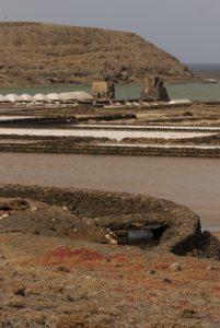 Salinas de Janubio. Île de Lanzarote (Islas Canarias).