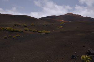Paysages volcaniques. Parque Nacional de Timanfaya. Île de Lanzarote (Islas Canarias).