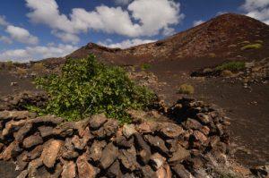 Cratère de Islote de la Vega. Parque Nacional de los Volcanes. Île de Lanzarote (Islas Canarias).
