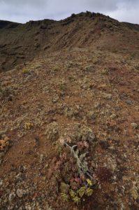 Le Cratère du volcan La Quemada à Maguez. Île de Lanzarote (Islas Canarias).