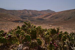 Paysage désertique de la vallée de Femés. Île de Lanzarote (Islas Canarias).