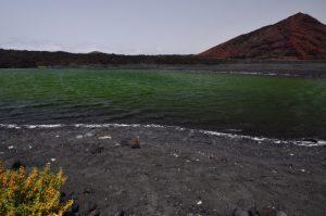 Lac vert, arbrisseau jaune (Zygophyllum fontanesii) et volcan rouge Montana Bermeja. Parque Natural de los Volcanes. Île de Lanzarote (Islas Canarias).