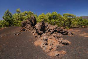 Paysage volcanique dans les scories entre la  Montana Enrique et volcan Bernardino.<br> Île de La Palma (Canarias)