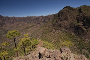 Panorama sur Caldera de Taburiente en montant au Pico Bejenado<br> Île de La Palma (Canarias)