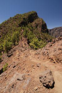 Vue sur le Pico Bejenado<br> Île de La Palma (Canarias)