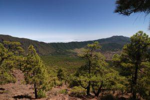 Vue sur les volcans de Cumbre Vieja depuis le Pico Bejenado.<br> Île de La Palma (Canarias)