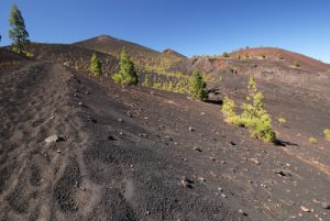 Entre le volcan Fuego et le Volcan San Martin sur la route des volcans (Cumbre Vieja). Île de La Palma (Canarias)