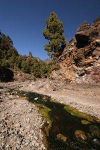Barranco de Las Agustias de la Caldera De Taburiente Île de La Palma (Canarias)