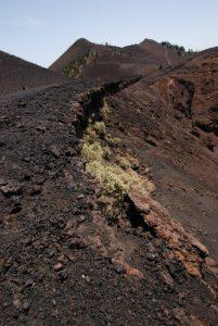 Volcan de la Deseada sur la route des volcans (Cumbre Vieja). Île de La Palma (Canarias)
