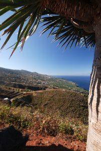 Vues depuis le Mirador de San Bartolomé Île de La Palma (Canarias)