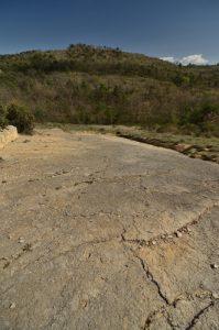 La Dalle à empreintes fossiles de pas Mammifères vivant il y a 30 millions d'années<br> Réserve Naturelle Géologique<br> Parc Naturel Régional du Lubéron