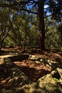 Extraction de meules près del'Abbaye Notre-Dame de Ganagobie<br> Parc Naturel Régional du Lubéron