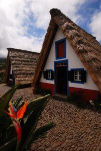 Chaumière typique de Santana avec oiseau de paradis (Strelitzia nicolai) Île de Madère