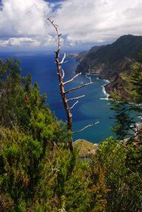 Penha de Aguia (Alt. 350m) Île de Madère