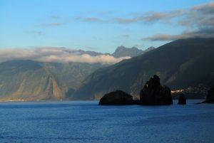Libellule Agrion de Rambur (Ischnura ramburii)<br> Anse Noire sur la Trace des Caps<br> Île de la Martinique