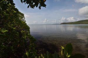 Prequ'île de la Caravelle<br>Île de la Martinique