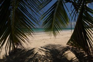 Anse Trabaud<br>Île de la Martinique
