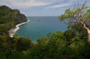 Point de vue sur Anse Couleuvre avec un Gommier rouge (Bursera simaruba)<br> Île de la Martinique