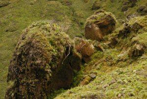 La Montagne Pelée<br>Île de la Martinique