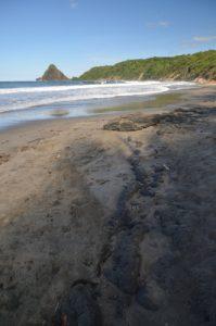 Anse Charpentier Île de la Martinique