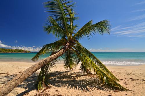 Extrait-Balades-Martinique