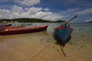 Baie de Tartane Presqu'île de la Caravelle Île de la Martinique