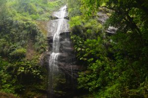 Cascade de la rivière Couleuvre Île de la Martinique