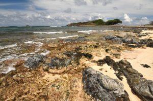 Vue sur Cap Ferré depuis la plage de Grande Anse Trace des Caps Île de la Martinique