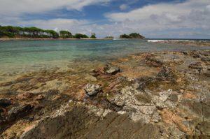 Vue sur Cap Ferré depuis Anse poirier Trace des Caps Île de la Martinique