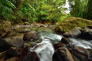 La rivière Lorrain<br> La Trace des Jésuites<br> Parc Naturel Régional de La Martinique