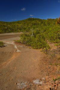 La Presqu'île de La Caravelle<br> Parc Naturel Régional de La Martinique
