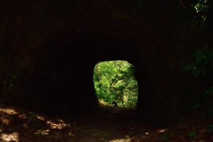 Tunnel sur le Chemin Prêcheur - Grand'Rivière<br> Parc Naturel Régional de La Martinique
