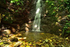 Cascade d'un affluent de la Rivière des 3 Bras<br> Chemin Prêcheur - Grand'Rivière<br> Parc Naturel Régional de La Martinique