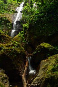 La Cascade de la rivière Couleuvre<br> Chemin de Cascade Couleuvre<br> Parc Naturel Régional de La Martinique