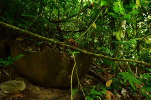 Les vestiges d'une Chaudière à Cacao<br> Chemin de Cascade Couleuvre<br> Parc Naturel Régional de La Martinique