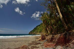 Anse à Voile<br> Parc Naturel Régional de La Martinique
