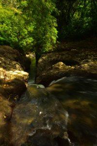 La cascade du Saut Babin<br> Parc Naturel Régional de La Martinique