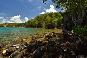 Le Site Naturel Protégé d'Anse Mathurin - Anse Bellay<br>